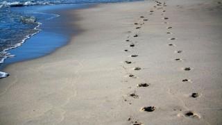 【速さと比】歩数と歩幅の問題を攻略!逆算思考と情報整理で解く